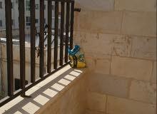 شقة مميزة للبيع 102 متر مقابل البوابة الجنوبية جامعة اليرموك