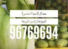 امبا عماني اخضر وطارج من المزرعة مباشرة