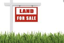 ارض في قصور بشير  للبيع مساحة 333.708 دونم من ((المالك مباشرة)) وبسعر مغري