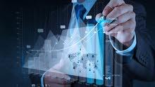 Virtual Financial Controller شركه المراقب المالي