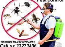 Pest control 100%