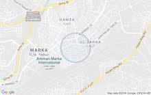 عمان _ماركا الشمالية
