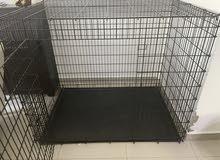 crate XXL ( Great Dane size)