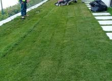 منسق حدائق ومسطحات خضراء تزيين اطلب عمل