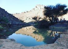 صحراء الجزائر جوهرة بمعنى الكلمة