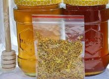 عسل طبيعي وزن العلبة 450 غرام السعر عشرة الاف