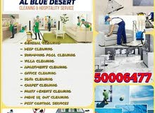 a Cleaning service