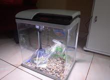 حوض سمك اخو الجديد