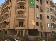 استلام واسكن شقتك في البنفسج عمارات خطوات من شارع التسعين