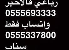 ارقام مميزه 3333؟؟0555 و 6؟05546666 و ؟053919191 و 6667؟05554 و المزيد
