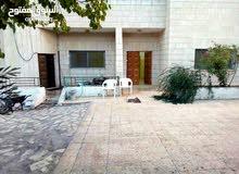 apartment in Al Karak  for rent