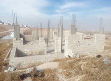 عمان ( ابوعلندا ) المستندة