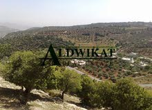 ارض للبيع في اجمل مناطق ماحص , 10,500م