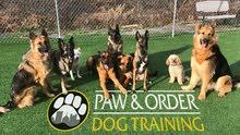 Canadian Dog Trainer مدرب كلاب