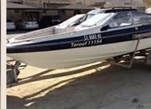 قارب امريكي 19 قدم للبيع