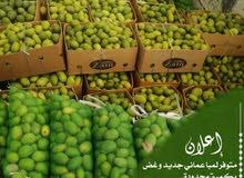حدال عماني (امبا)
