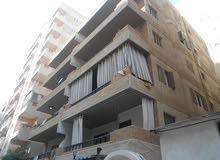 شقة سوبر لوكس 110م واجهة بحري - مسجلة في شاطئ النخيل الاسكندرية