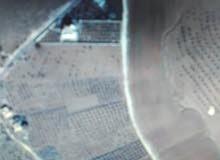 ارض في مادبا الدليلة قرب الامريكية 5 دونم زيتون