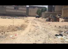 ارض 200 متر في ام النعاج خلف معمل ثلج اللامي للبيع