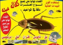 اضخم واكبر شركه حشرات علي مستوي الكويت اباده تامه لجميع الحشرات الاباده ال