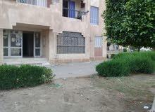 شقة للبيع الشيخ زايد الحي 13 المجاورة 3