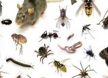 شركة تنظيف ومكافحة حشرات في ابو ظبي والعين