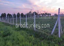 ارض للبناء في #سليفري اورتاكوي #اسطنبول بسعر رائع 485 ليرة تركية
