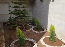 شقة شبه أرضية مطلة من جميع الجهات مع حديقة ومدخل مستقل في ضاحية النخيل- خرب سكا بسعر أقل من الكلفة