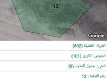 10 قطع اراضي للبيع كاش داخل الطفيله في عدت مناطق.