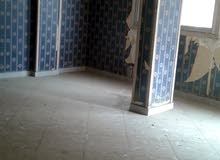 apartment in Giza for rent