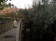 أرض للبيع ب منطقه الرصيفه حي الحسين