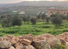 جرش- ارض للبيع والاستثمار في اجمل منطقه زراعيه مطله