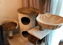 Almost Brand New Cat Tree House and Litter box (Branded)