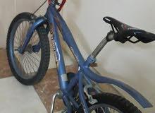 دراجه كوبرا للبيع