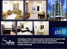 Full Building 12x3 Bedroom Furnished Apartments for Rental in HIDD