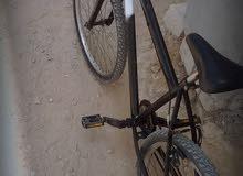 دراجه ايطاليه رقم  26