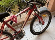 دراجة مقاس 16 ماركة البينا العالمية