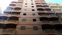 شقة للبيع بالعجمي بجوار قرية شهرزاد شارع الحديد والصلب