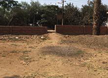 ارض مبانى بكفر الحاج داود مركز السنطة محافظة الغربية على الطريق العمومي   السعر للمتر 3000 جنية .
