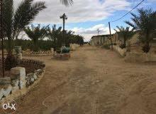 للبيع مزرعة 10فدان مزروعة بالكامل- هذا العقار بمصر