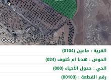 مزرعة للبيع قرية ماعيين- مأدبا