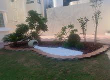 تصميم ديكور حدائق