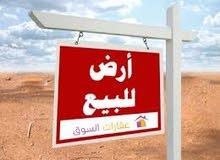 ارض موقع مميز بغداد  البنوك المشاتل