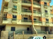 شقة مع حديقة مدينة الشروق - القاهرة المساحة الكلية 155 متر منهم 25 متر حديقة