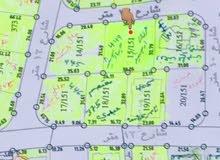 للبيع مساحة 1 دونم بارقى احياء العامرية -حي طيبة