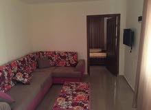 سكن ديما للطالبات في اربد السكن الافخم على مستوى محافظة اربد سكن اربد للطالبات