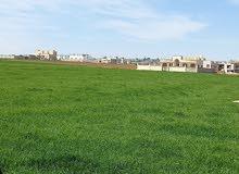 ارض سكنية (( مادبا ))