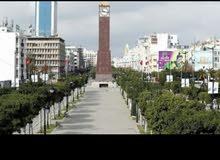 شقة مفروشة باليوم تونس العاصمة