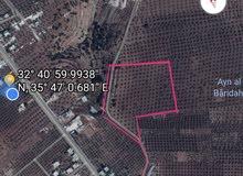 أرض متعددة الإستخدام للبيع في أربد /لواء بني كنانة /سمر الكفارات