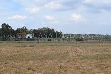 terrain a 5 km yasmin il hamamet